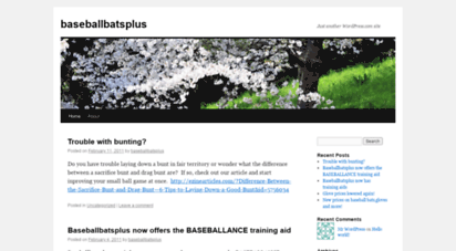 baseballbatsplus.wordpress.com