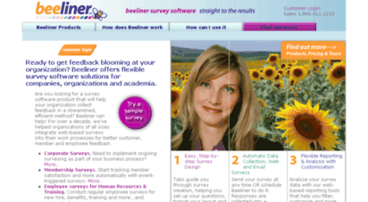 beelinersurveys.com