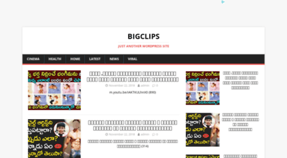 bigclip.in