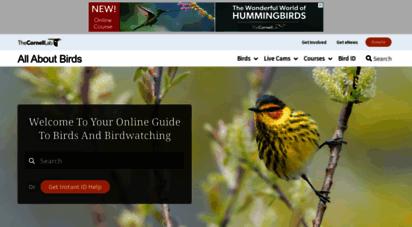 allaboutbirds.org -