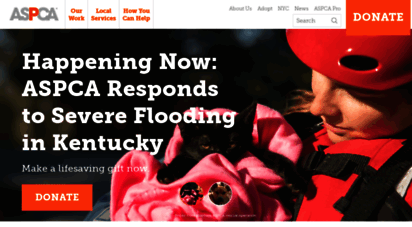 aspca.org - aspca  american society for the prevention of cruelty to animals