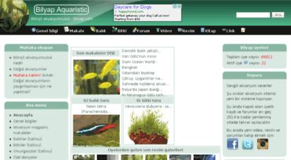 bilyap.com - anasayfa  bilyap aquaristic akvaryum sitesi