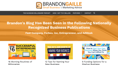 brandongaille.com