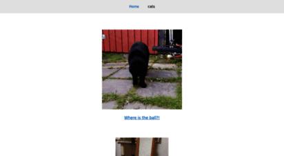 catgifpage.com
