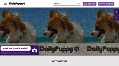 dailypuppy.com -