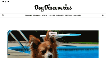 dogshealthproblems.com - featured articles - dogs health problems