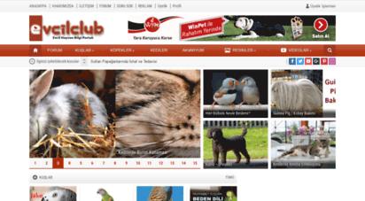 evcilclub.com - evcilclub - evcil hayvan portalı