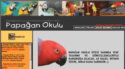 papaganokulu.org