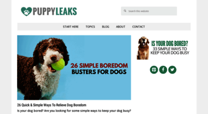 puppyleaks.com - puppy leaks - tips & tricks for dog owners