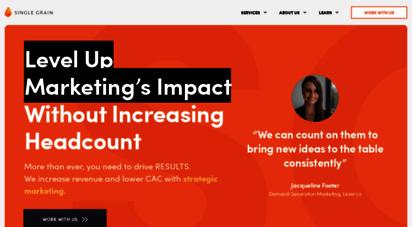 singlegrain.com - digital marketing agency / online marketing agency with a strict roi focus.
