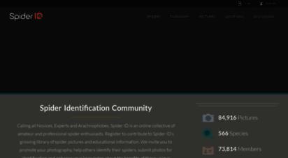 spiderid.com
