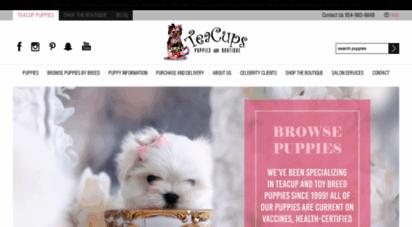 teacupspuppies.com