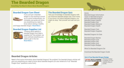 thebeardeddragon.org - the bearded dragon » everything about bearded dragons