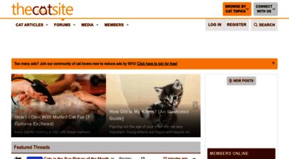 thecatsite.com - thecatsite
