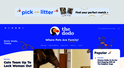 thedodo.com - the dodo - for animal people