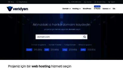 veridyen.com