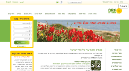 wildflowers.co.il - צמח השדה :: פרחים וצמחי הבר של ארץ ישראל :: דף הבית