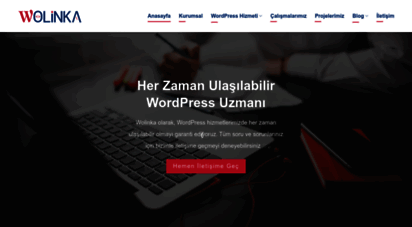 wolinka.com.tr - wolinka - profesyonel wordpress hizmeti