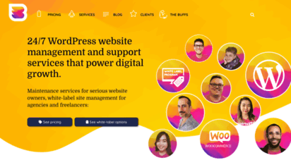 wpbuffs.com - wp buffs  24/7 wordpress website management